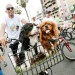 Los Olivos arranca mes de aniversario con Gran Bicicletada 2016