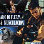 Seminario de Fuerza y Musculación se desarrollará este 07 de Abril